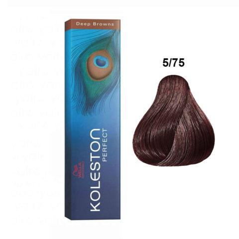 5/75 Light Brunette Mahogany Brown Wella Koleston Perfect Deep browns 60ml