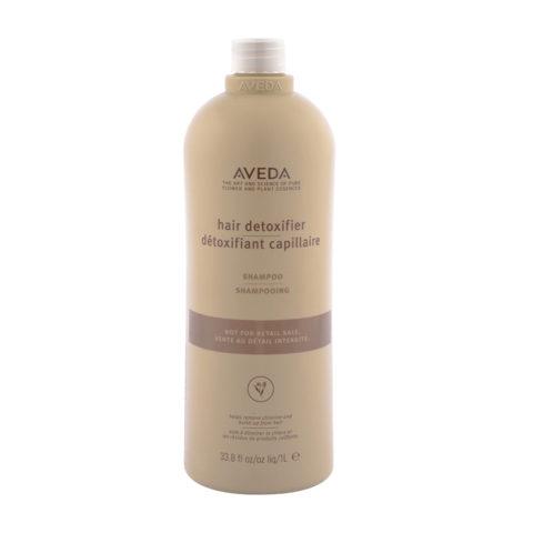Aveda Hair Detoxifier Shampoo 1000ml - detoxifying