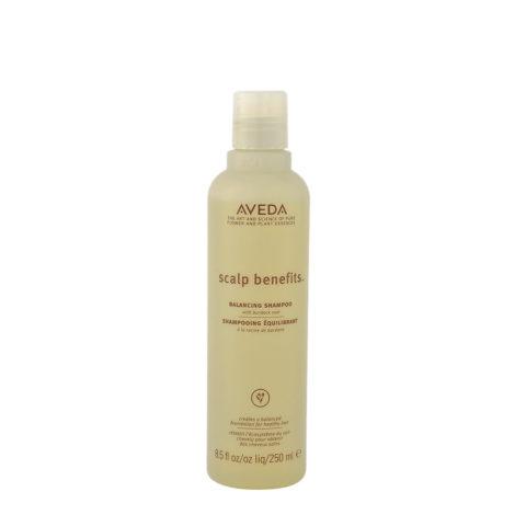 Aveda Scalp benefits™ Balancing Shampoo 250ml - with burdock root