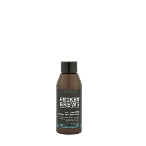 Redken Brews Man Mint Shampoo 50ml