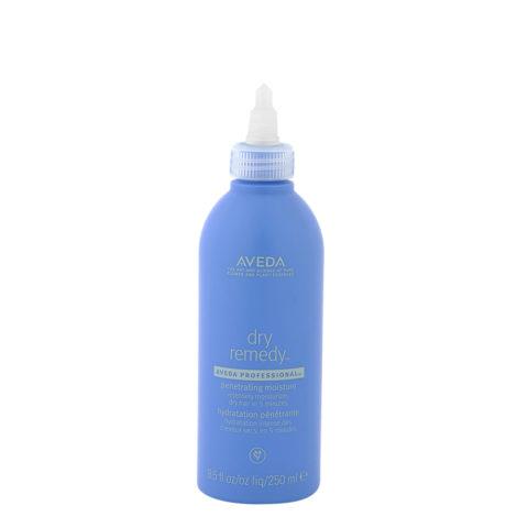 Aveda Dry remedy Penetrating moisture 250ml - ultra hydrating quick treatment
