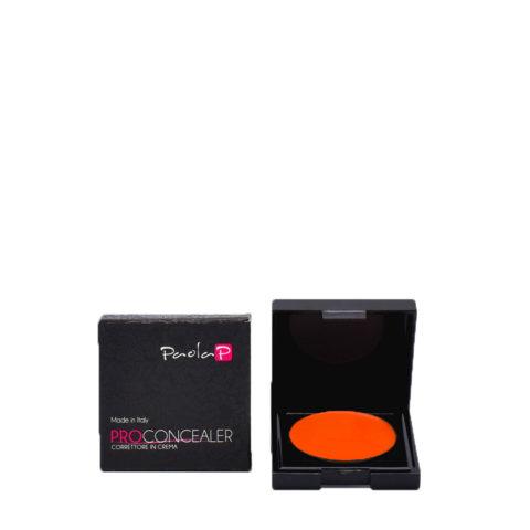 Paola P 09 Pro Concealer Concealer in Cream 3gr
