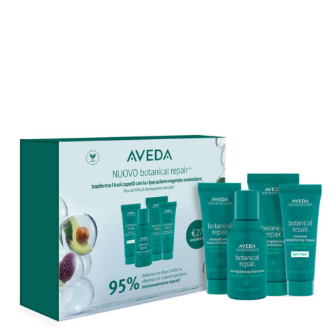 Aveda Botanical Repair Travel Size Set