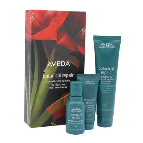 Aveda Botanical Repair Christmas Set For Damaged Hair